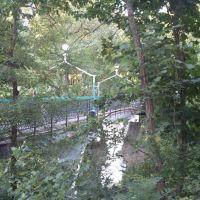 Пешеходный мостик, Петриков