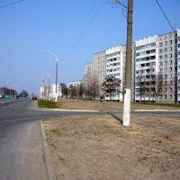 """Рогачев микрорайон """"Девятки"""" улица Богатырева, Рогачев"""