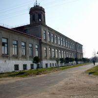 г. Рогачев. Школа N2.Конец апреля 2009 года, Рогачев