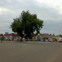 Перекресток с дорогой Р-43. Рынок, Рогачев