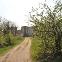 яблочный сад, Рогачев