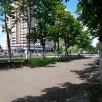 Half-panorama, Светлогорск