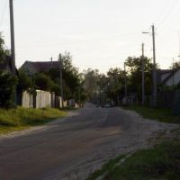 Street in Shacilky village, Светлогорск