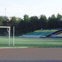 Bumajnik Stadium, Светлогорск