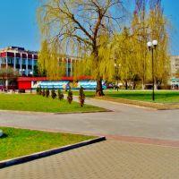 Центр культуры, Светлогорск