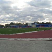 Стадион, Хойники