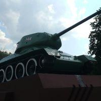 WWII Monument / Gojniki / Belarus, Хойники