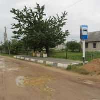 остановка, Дятлово