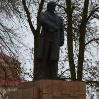 Ленин, Большая Берестовица
