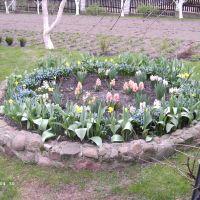 Der kleine Garten Mai 2013, Большая Берестовица