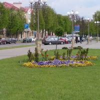 Плошча Леніна, Волковыск