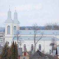 Костел Св. Вацлава, Волковыск