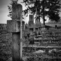 Захоронение польских солдат, Волковыск