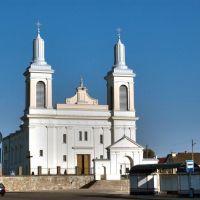 Костел Святого Вацлава, Волковыск, Гродненская область, Беларусь, Волковыск