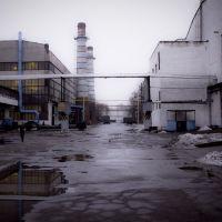 Belkard In Crysis, Гродно