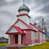 Храм святого преподобного Мартина Туровского, Желудок