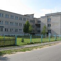 Zheludok Hospital, Желудок