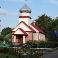 Православный Собор, Желудок