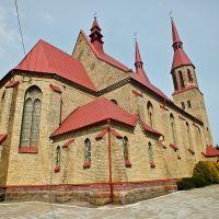 Костел Св.Троицы в Зельве, Зельва