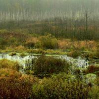 Moor, Козловщина