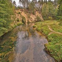 Ūlos kranto atodanga prie Mančiagirės. Ūla river coastal escarpment, ~20 meters high, Козловщина