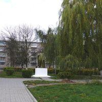 Памятник Ленину, Лида
