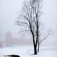 Лидский замок в тумане, Лида