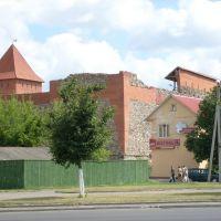 Лидский замок 2008, Лида