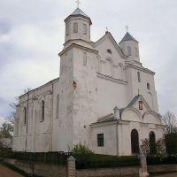 Собор в Новогрудке, Новогрудок
