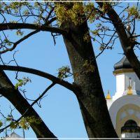 церковь св. Николая, Новогрудок