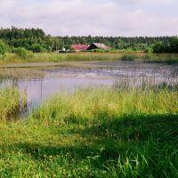 Пруд на пресечении ул. Ленинская и Былины (Pond on the Leninskaja st. and Byliny st. crossing), Островец