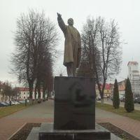 Ленин, Слоним