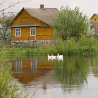 Schara river, Слоним