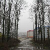 Тропа от станции. The trail from the station., Сморгонь