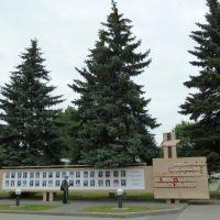 months employees, Сморгонь