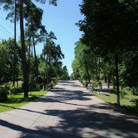 Дорожка в парке, Борисов