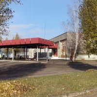 Пасадачная пляцоўка на аўтавакзале Вілейкі, Вилейка