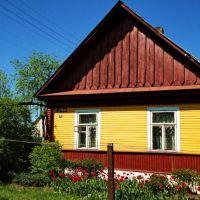 Деревенская жизнь в маленьком городе, Вилейка