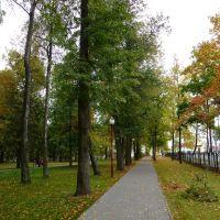 Аллея в Вилейском парке, Вилейка