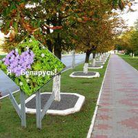 Я люблю Беларусь!, Воложин