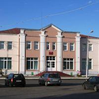 Библиотека, Воложин