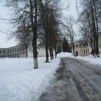 Вход в школу №1, Городея