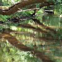 Река. Отражение / River. Reflection, Заславль