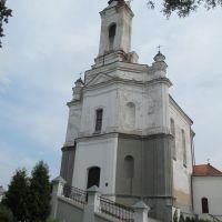 Касьцёл Найсьвяцейшай Дзевы Марыі (1774-79), Заславль