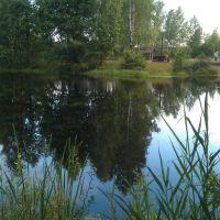 Зеленоборский бассейн!, Зеленый Бор