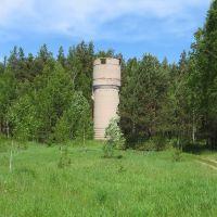 Башня, Зеленый Бор