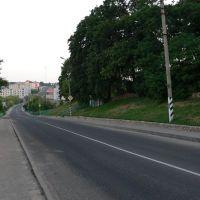 Лето 2006 года, Копыль