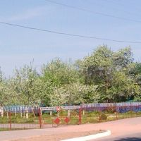 Деревья зацвели во дворе детсада, Крупки