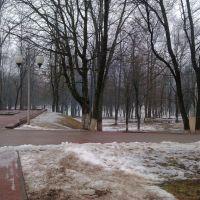 Парк, Крупки