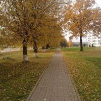 Опавшие листья, Крупки